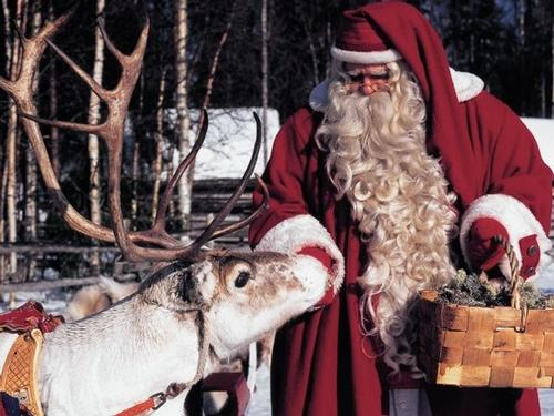 Lapland Packages