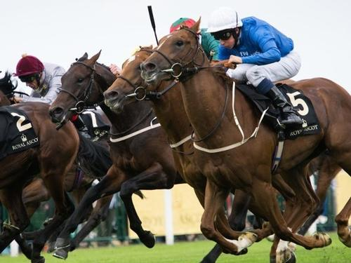 Mullingar Travel -  Cheltenham 4 Day Packages from €499 pp