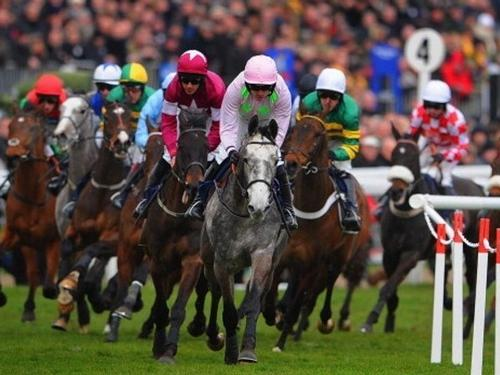 Cheltenham 2019 Package