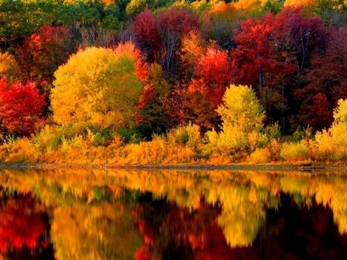 Mullingar Travel - Fall Colours of New England Tour