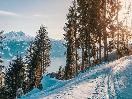 Austria Ski - 7 Nights - €449pp**