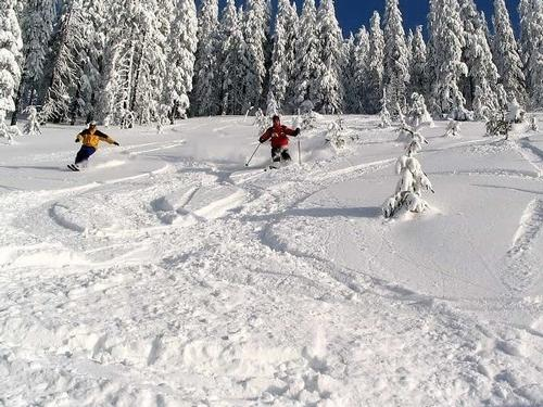 Ski in Romania - 7 Nights - €899pp*